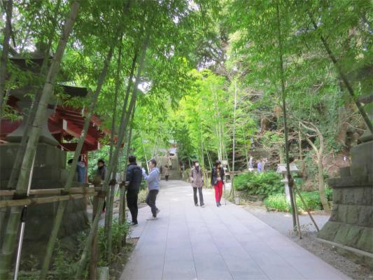 来宮神社本殿の裏側に鎮座