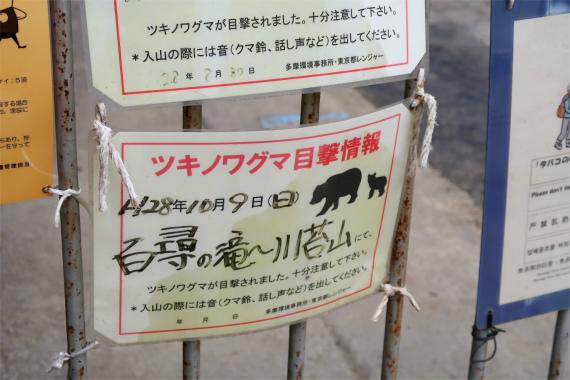 川苔山・百尋ノ滝周辺は、クマの生息地域