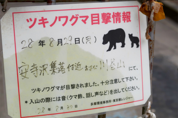 川苔山・百尋ノ滝周辺のクマ出没情報
