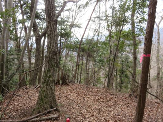 牧馬峠への登山道尾根が二つ