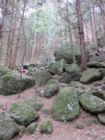 キャンプ場から大明神山・石老山への登山コース