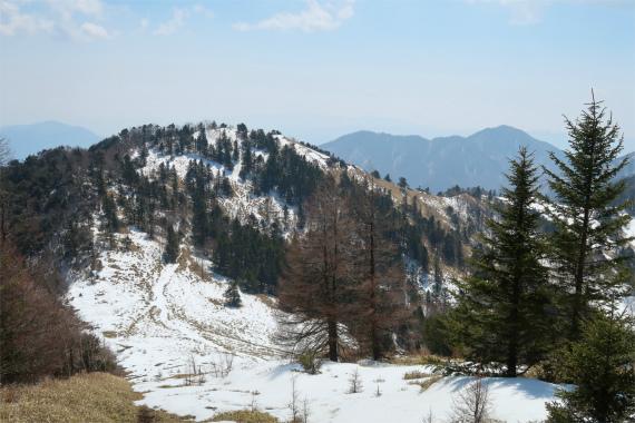 熊笹山から見る天狗棚山の景色