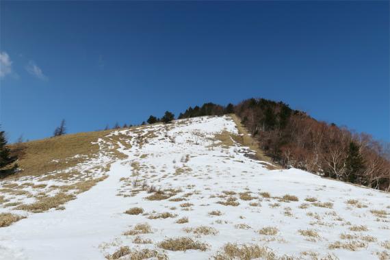 振り返っての熊笹山