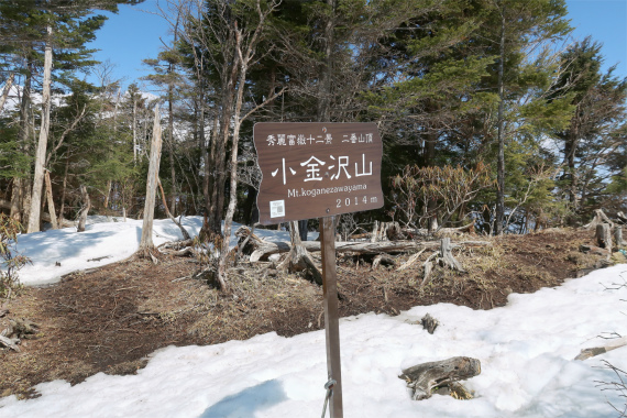 小金沢連嶺の主峰秀麗富嶽十二景二番山頂である小金沢山