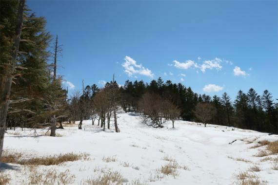 小金沢山から牛奥ノ雁ヶ腹摺山の区間の雪道が結構深く
