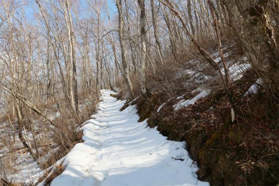 北斜面情け容赦ない極悪雪道