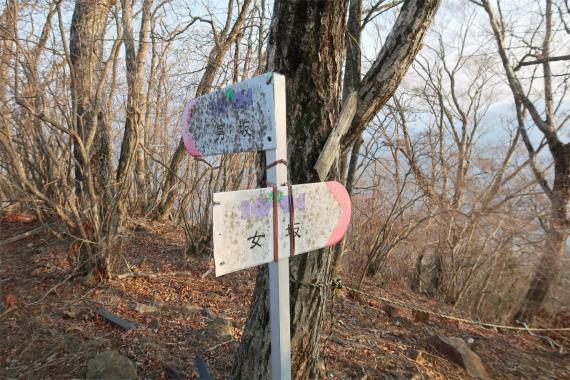 滝子山直下にある男坂・女坂の分岐