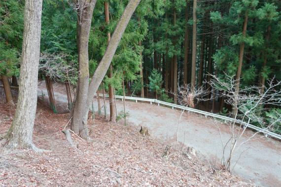林道急斜面