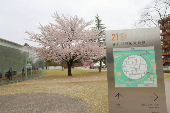 金沢21世紀美術館に入館