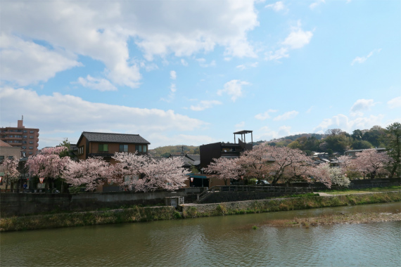 ひがし茶屋街の入口付近浅野川
