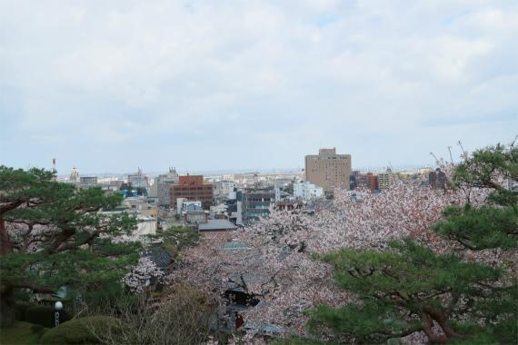 唐崎松周辺から金沢市街の景色