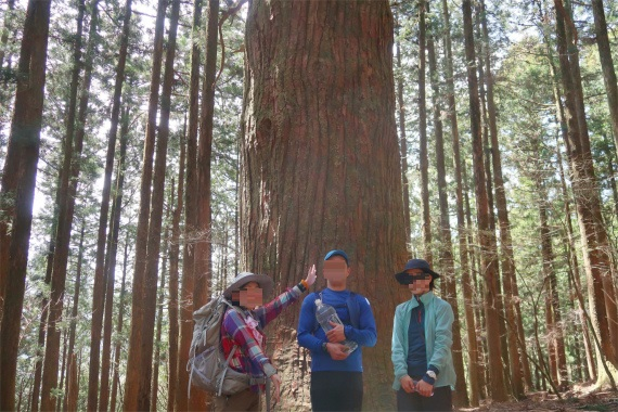 武甲山のランドマークツリーと皆様