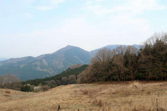 七峰ハイキング大会のコース樹林帯歩きが長い