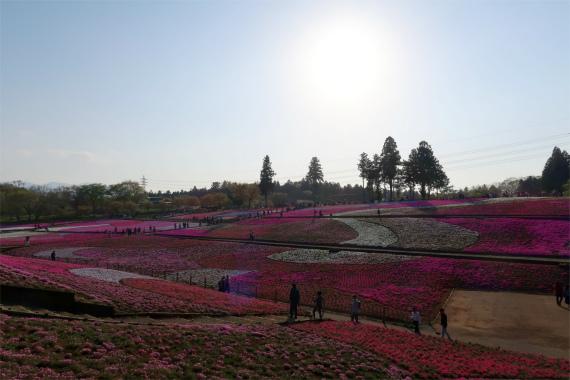 日本ではないような素晴らしい景色