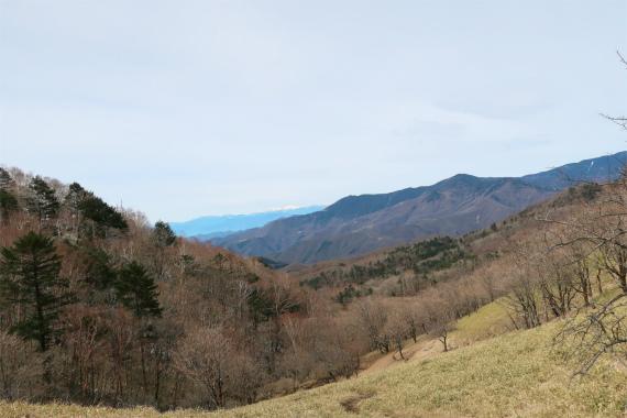 雁峠からの奥秩父の景色