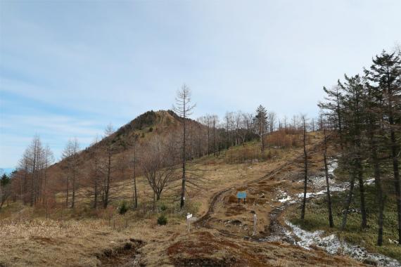 笠取小屋方面に進むと、左手(東)に笠取山