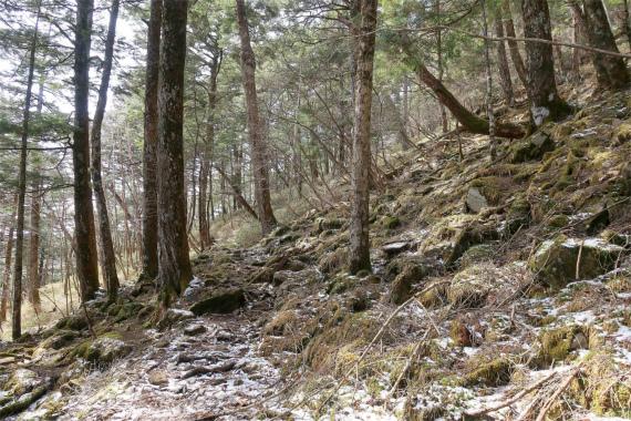 山ノ神土から西御殿岩を目指し