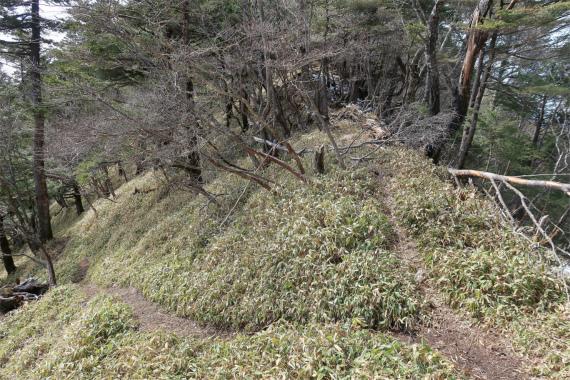 唐松尾山登山バリエーションルート