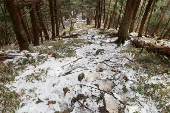 笠取山凍結していて非常に滑りました