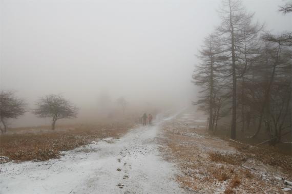 笠取小屋周辺のルート上に、雪が2、3cm積もった
