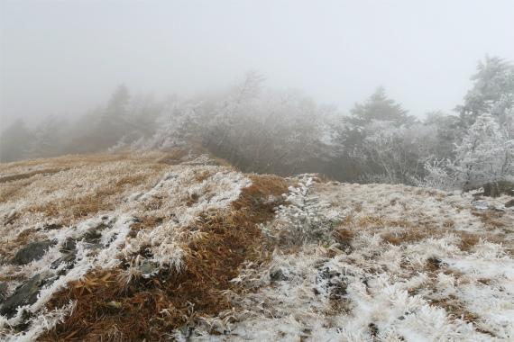 雁坂峠から雁坂嶺ルート上に雪が多く