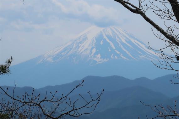 境沢の頭富士山の景色