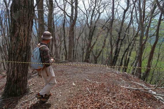 大志戸山古部山に張られたトラロープの先