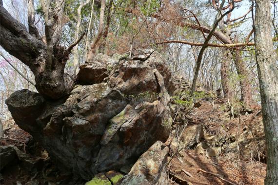 徳並山周辺岩地帯