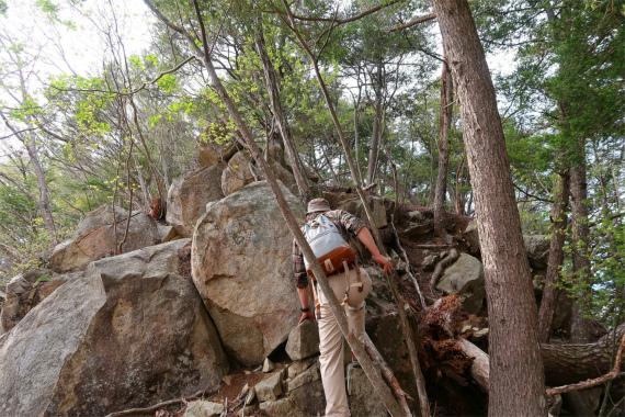 徳並山登り坂