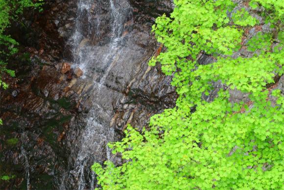 三頭ノ大滝水量が少なく