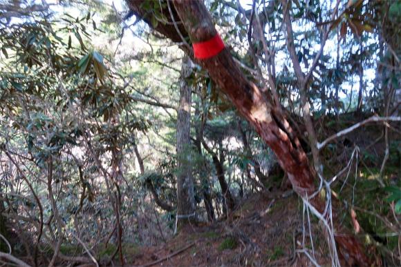 赤矢印の所を進むと急降下マーキング