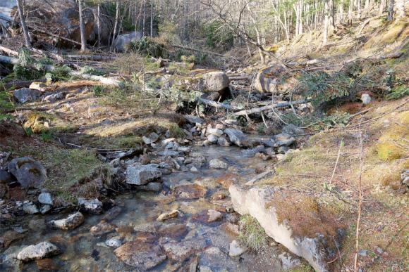 沢の上流が水場