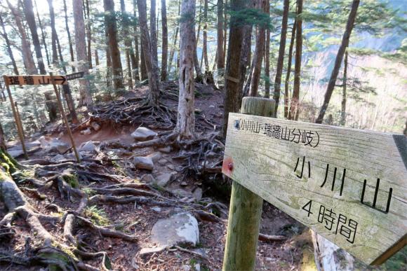 瑞牆山・小川山への分岐