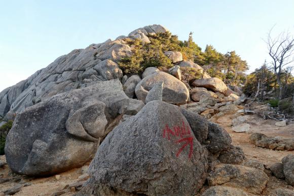 大日岩の上部