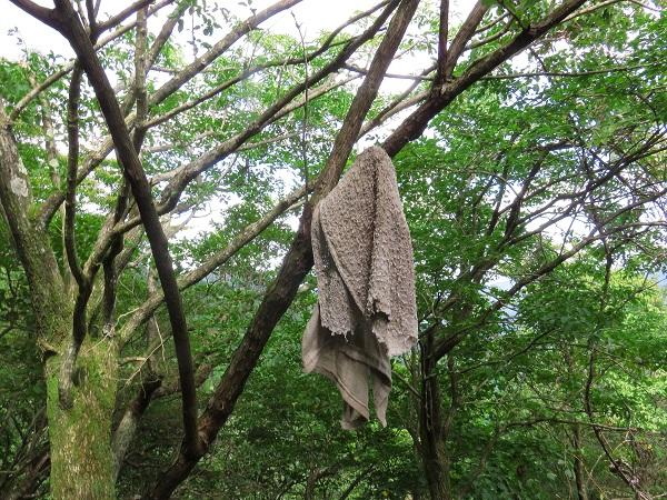 ボロ雑巾マーキング