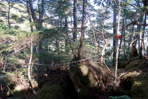 瑞牆山東尾根のルート上にあったマーキングとロープ