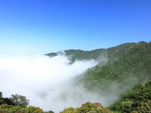 大倉尾根は雲の中
