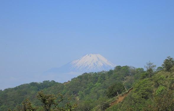 丹沢表尾根富士山