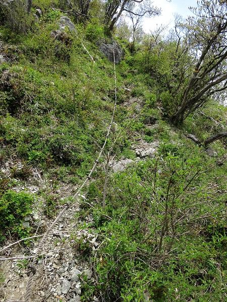 蛭ヶ岳南稜登山コース