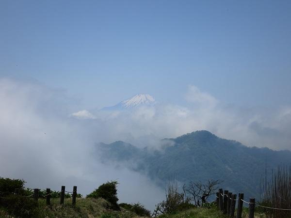 蛭ヶ岳から富士山