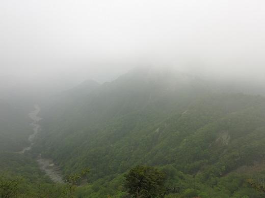 臼ヶ岳南尾根からユーシンロッジ