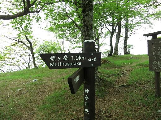 臼ヶ岳南尾根方面