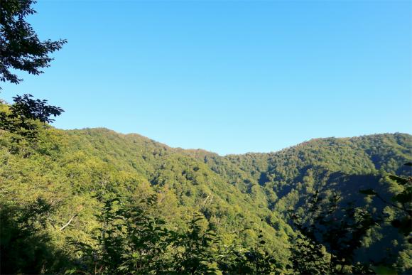 大日杉ルート地蔵岳