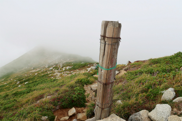 登山道の脇にダイクラ尾根入口の道標