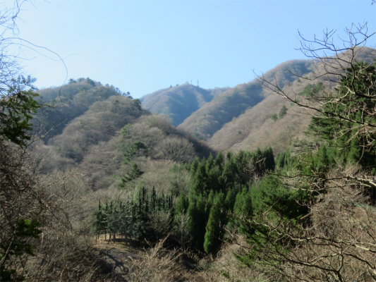 ネクタイ尾根付近から大山景色