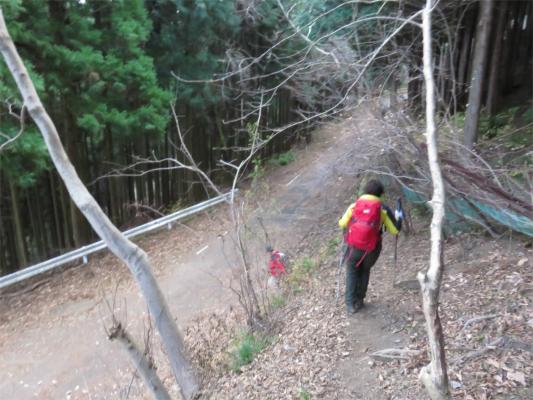 向ふれあい学習センター日向薬師方面への林道