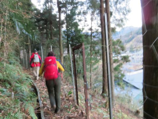 入山周辺鹿柵ルート