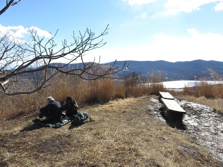 平尾山の山頂ベンチ休憩スポット