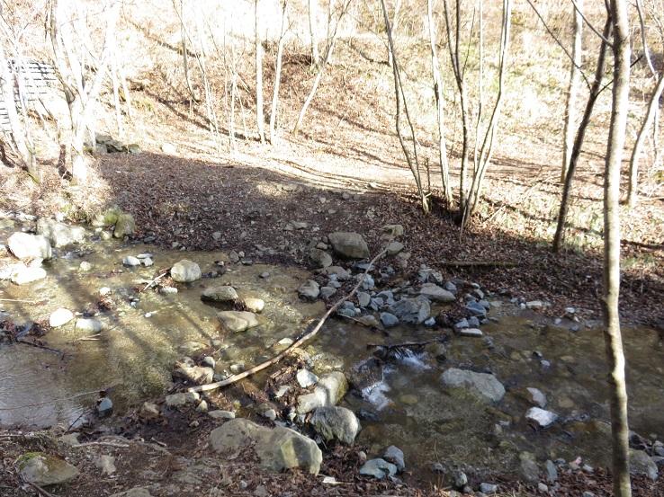 石割山下山道に渡渉箇所