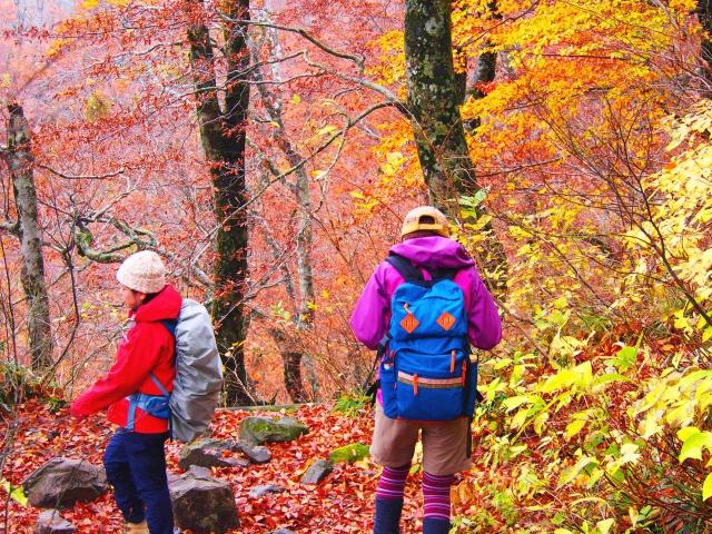 大山登山と初心者紅葉の時期